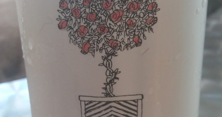 Rose américain 2